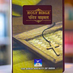 HINDI-ENGLISH BIBLE