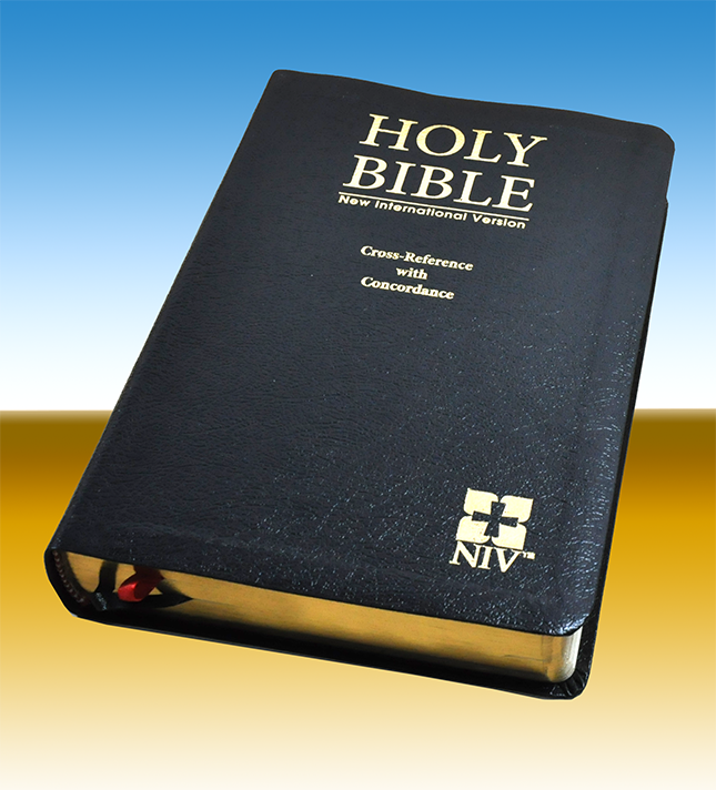 niv cross reference with concordance_BL YAAP