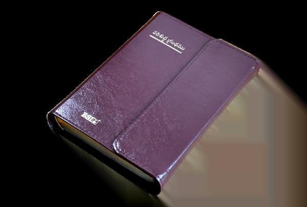 TELUGU Bible OV27MTI(Cc) 8122138985_9788122138986-04