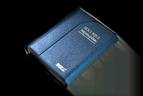 MALAYALAM Bible OV 22PLMTI(NF)_8122130399_9788122130393_04