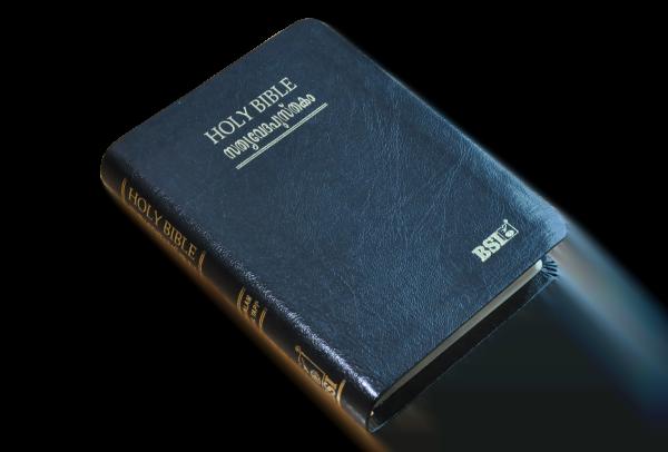 MALAYALAM Bible OV 25TI(NF)BL 8122130410_9788122130416_2